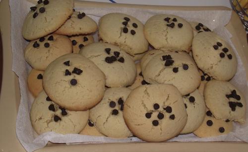 damla çikolatalı kurabiye Damla Çikolatalı Kurabiye